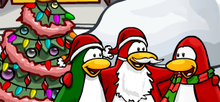 Christmas penguins.PNG